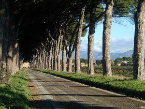 Agriturismo a Roma